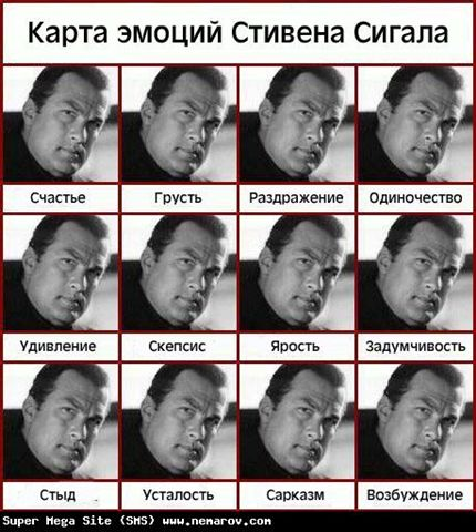 эмоции Стивена Сигала - _20060213-sigal.jpg