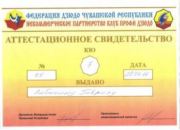 Указ об Об учреждении ордена Родительская слава  - бьти.jpg