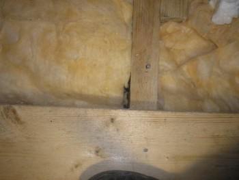 Наш неЗагородный дом: неожиданный порыв и решение ва-банк - P1152555.JPG