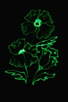 Рисование светом для детей - IMG-20180114-WA0010.jpg