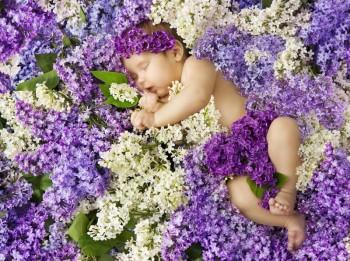 Весенние цветочки, дочки и сыночки 2019 - м-а-енец-в-сирени-цветет-поз-равите-ьная-открытка-новорож-енного-42331936.jpg