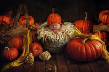 Осеннички 2018 - SweetLazyHippo_digitalbackdrop900px028.jpg