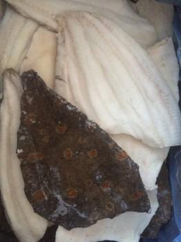 Мурманская рыба, морепродукты, печень трески судовой заморозки  - IMG_4283.JPG