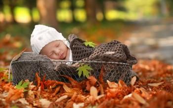 Ждём мы осенью детишек: и девчонок, и мальчишек Осенята 2019 - часть 3. - mladenec-korzina-osen.jpg