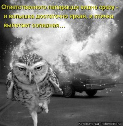 Журналисты жгут - proxy-7.imgsmail.ru.jpeg