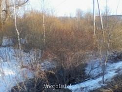 А вот со стороны трассы на поле не проехать. Там вдоль дороги канава, заросшая кустарником и деревьями. - а это подъезд с другой стороны к участкам.jpg