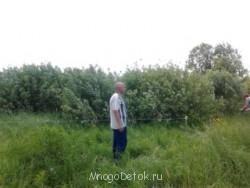 Участки для многодетных в Шустиково Болото  - 2013-06-05 14.20.04.jpg